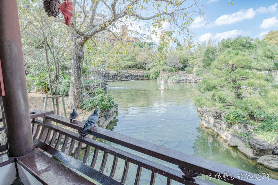日本沖繩福州園中以夏季代表性花朵命名的荷花塢