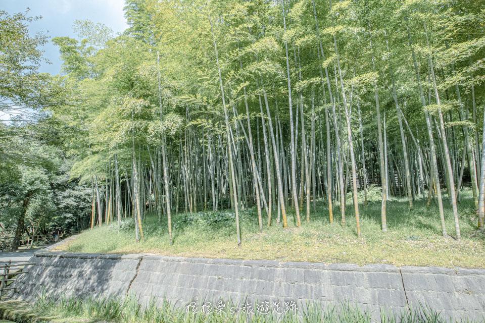 逛仙巖園的途中,有小山上的曲水之庭、御庭神社、小徑邊的江南竹林可遊覽