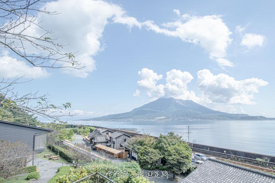 仙巖園中的松風軒2樓露台,除了能遠眺櫻島火山之外,還有櫻花樹呢!