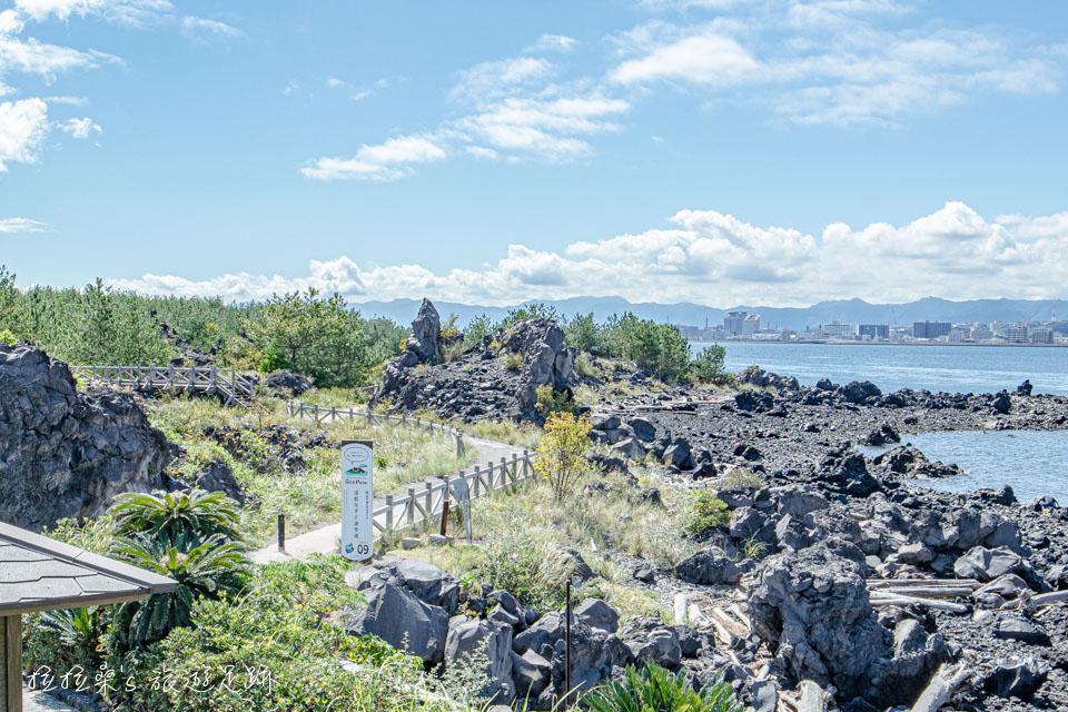 日本遊歩百選之一,櫻島上的溶岩海岸散步道
