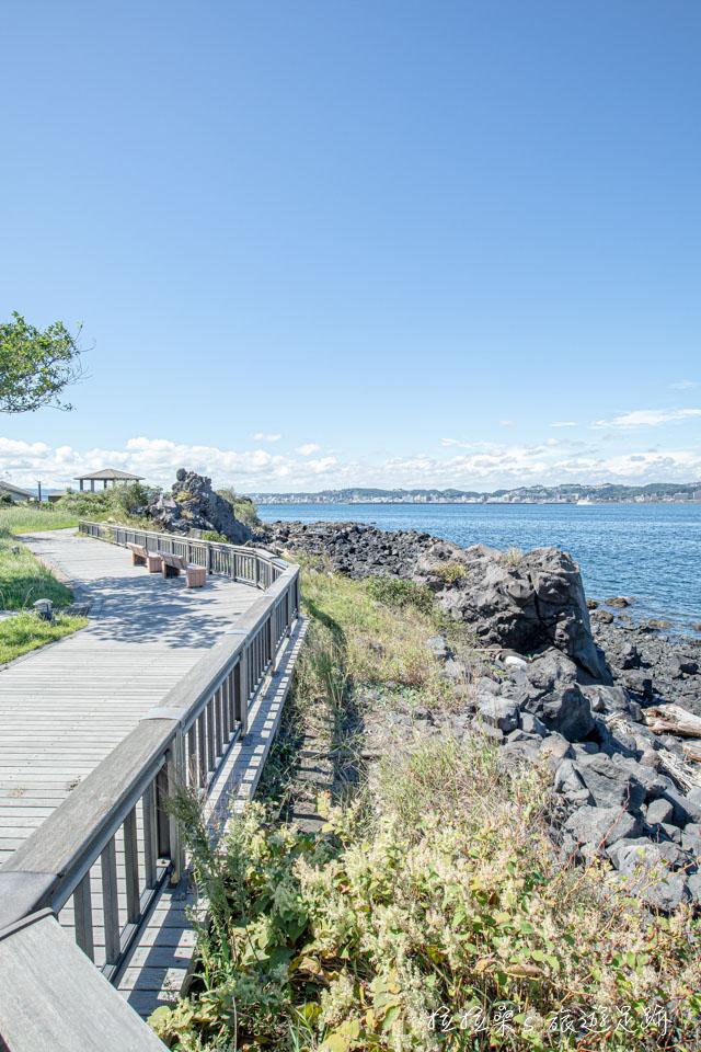 櫻島熔岩海濱公園的濱海步道