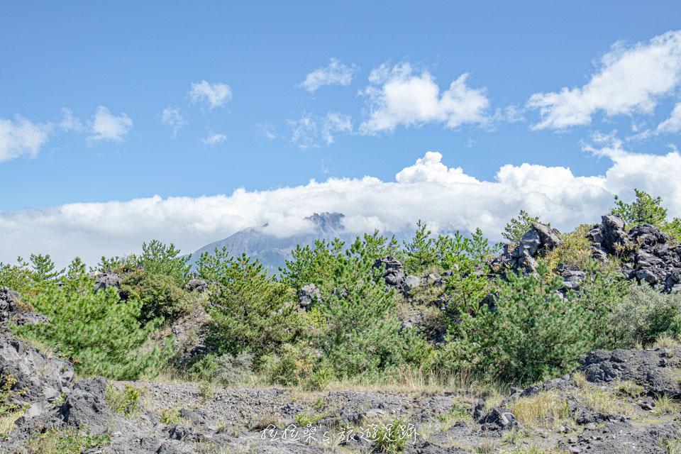 櫻島溶岩なぎさ遊歩道也能看到櫻島火山