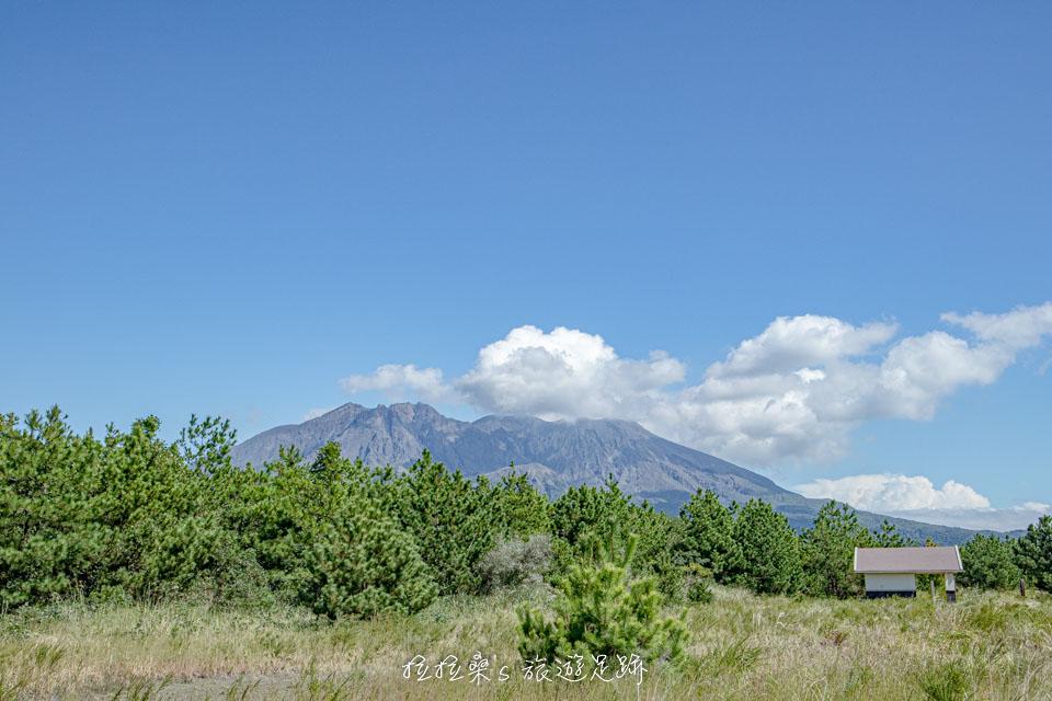 從櫻島溶岩なぎさ遊歩道能清楚地看見櫻島活火山
