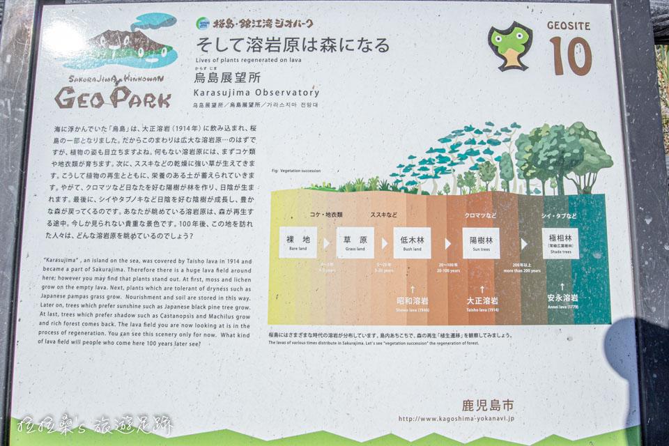 烏島展望所有生長在火山岩的樹林介紹
