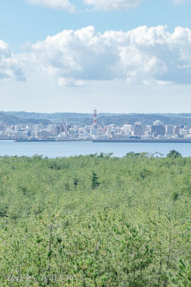 也可以從烏島展望所遠眺鹿兒島市區