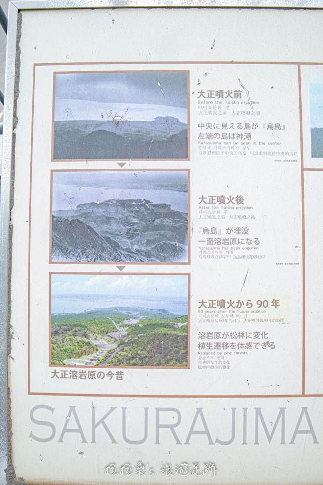 湯之平展望所裡的櫻島大正爆發簡介