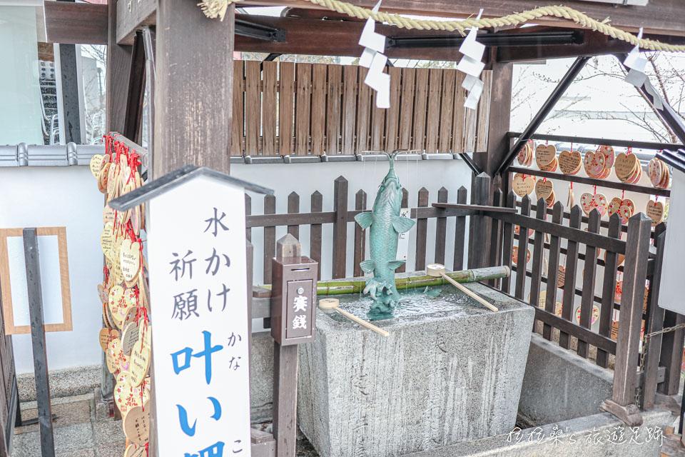 神戶北野天滿神社有能增加戀愛運勢的叶い鯉手水社