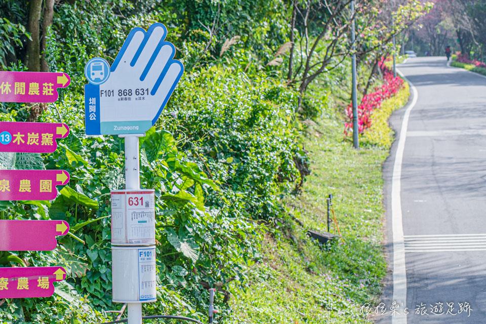 搭631、868號公車至圳阿公站,下車就是淡水滬尾櫻花大道的起點