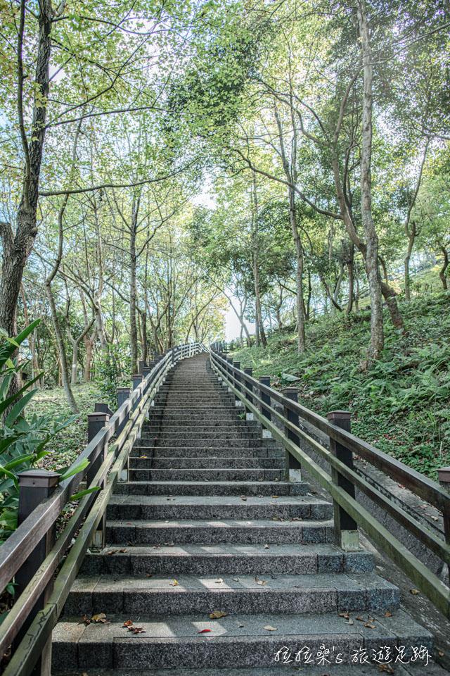 龜山長庚養生村裡走起來很舒服的養生步道