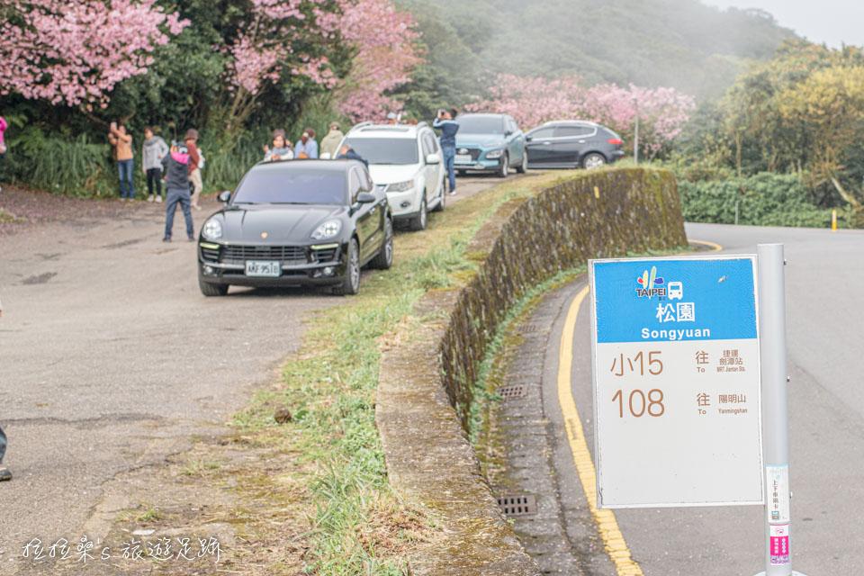 菁山路101巷的櫻花附近有免費停車場可停車