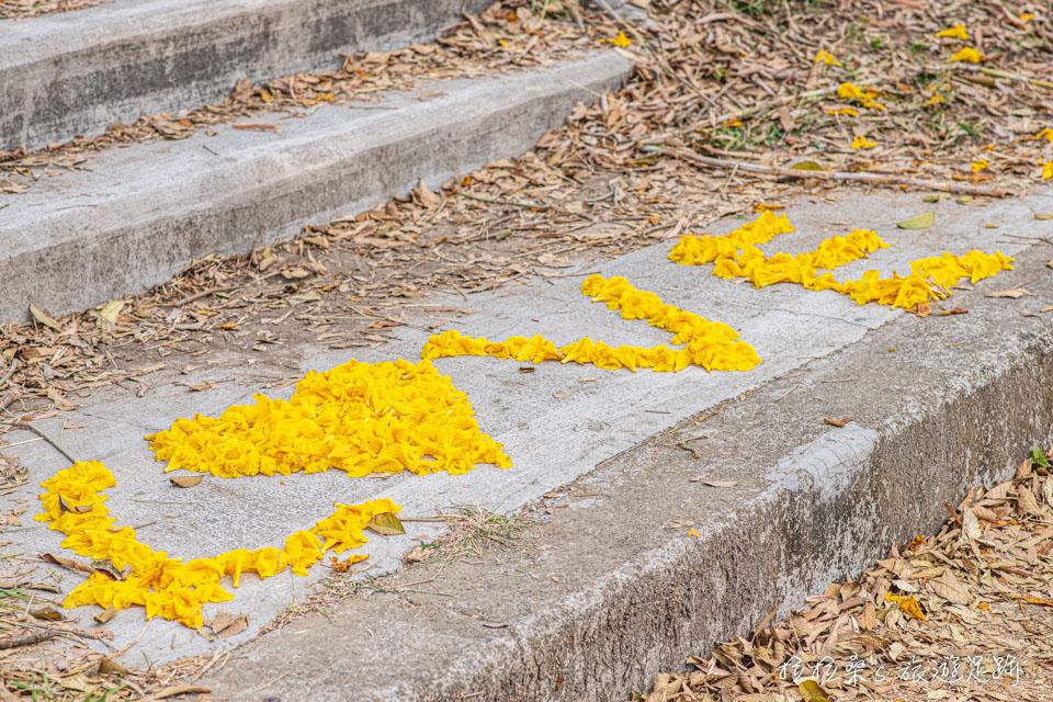 在朴子溪也有不少旅人用落下的風鈴木來排字