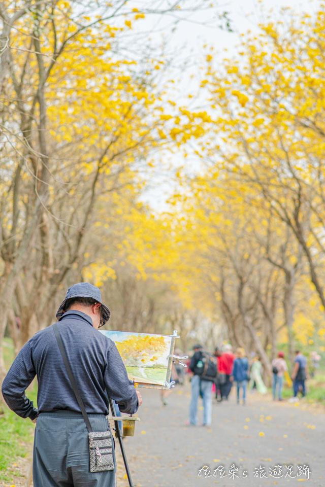 也有人專程來畫出朴子溪的黃金風鈴木的美景