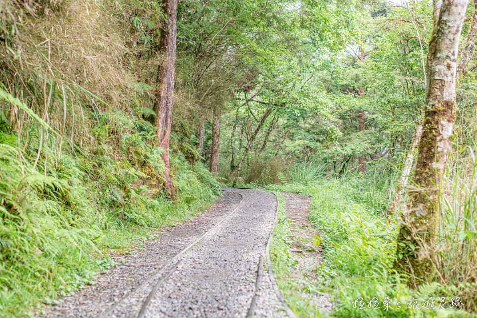 迷人的見晴懷古步道,由部分的見晴線運材軌道所整建而成