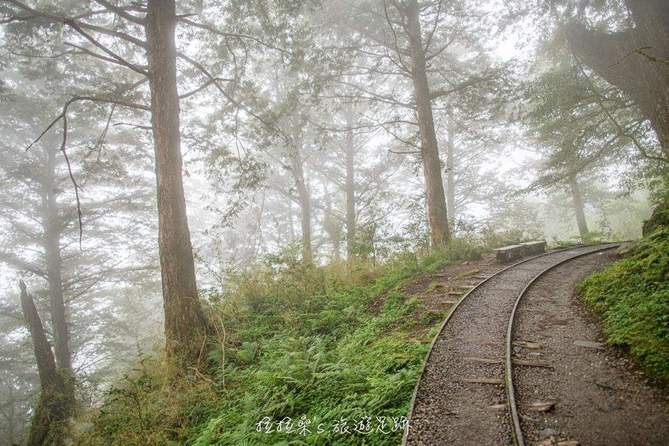 宜蘭太平山見晴懷古步道,漫步在山嵐、綠樹中的舊鐵道,韻味十足的山間小路