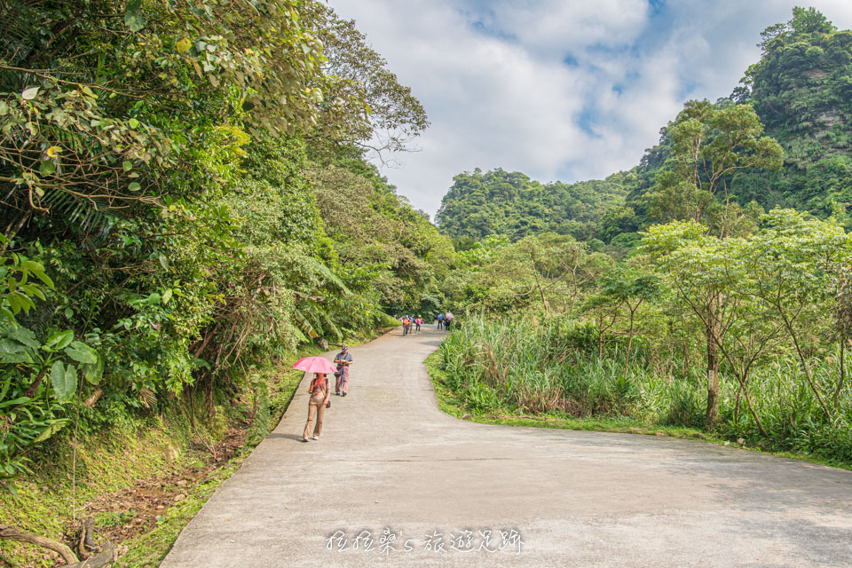 通往姜子寮絕壁步道入口的道路一路平緩好走