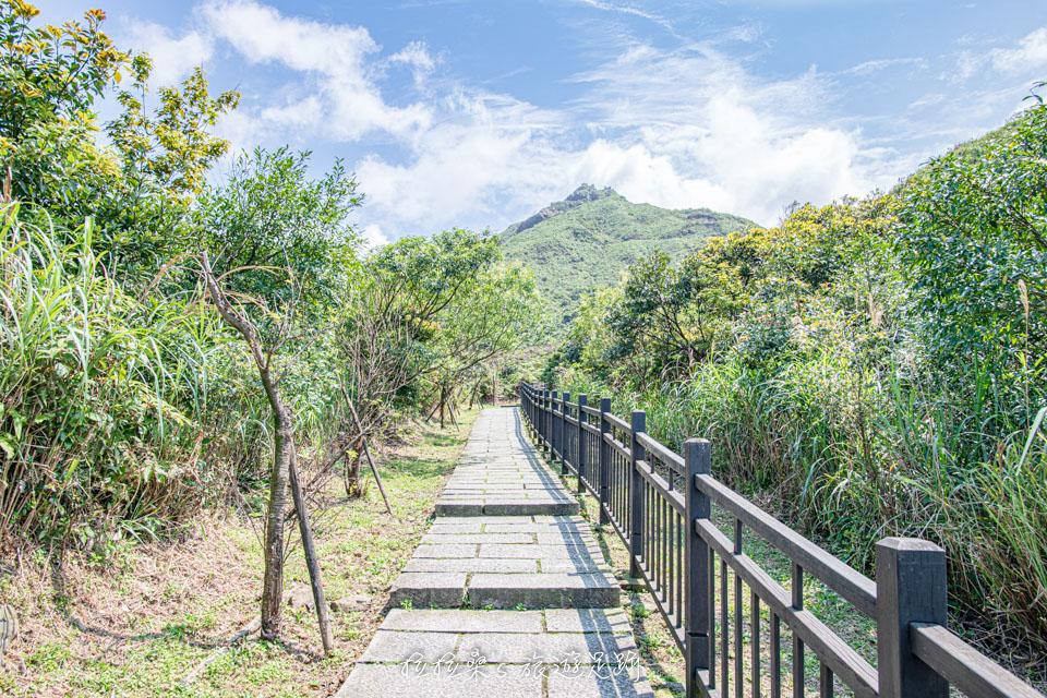 茶壺山步道不難爬,沿途都是好走的石階路