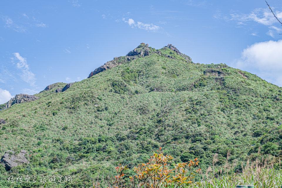新北瑞芳無耳茶壺山,盡賞山頭上絕美的視野,原來東北角的山與海這麼美