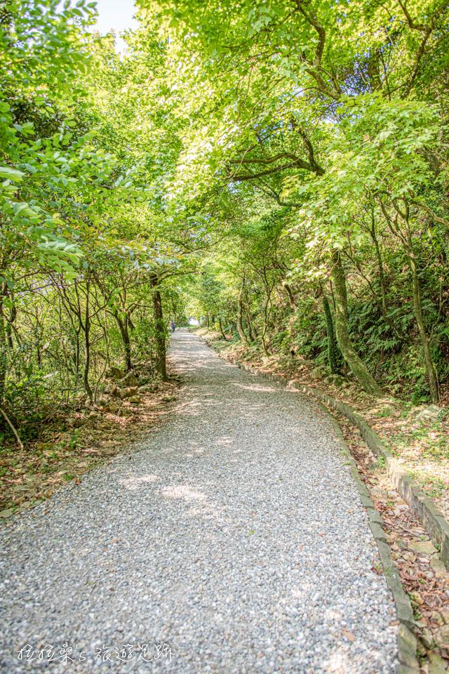 前往金瓜石地質公園的步道一路平緩好走