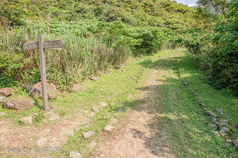 金瓜石地質公園的步道岔路能夠通往草山戰備道路