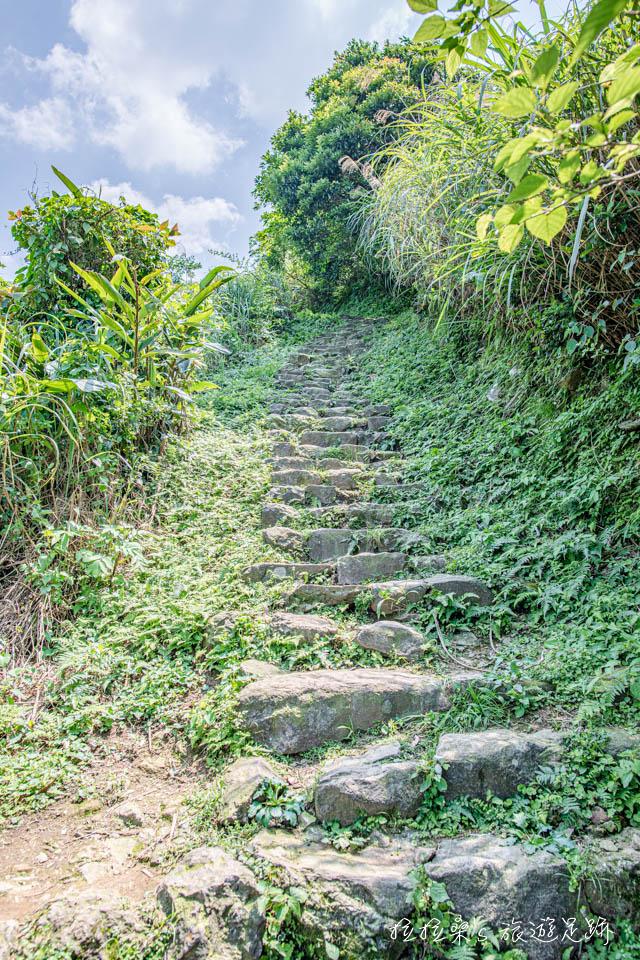 黃金神社續接本山步道的路段較為崎嶇