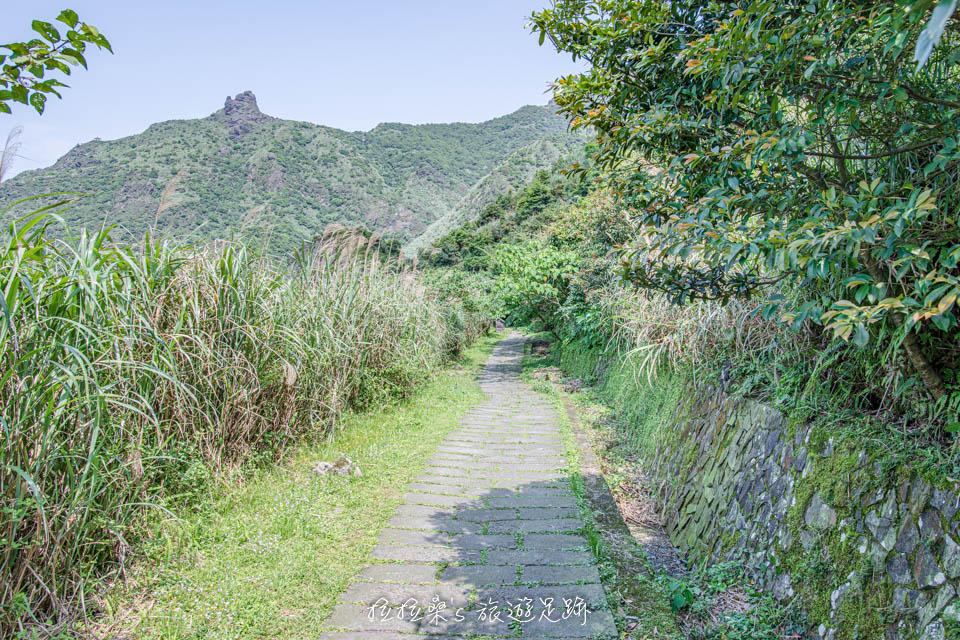 高空索道機房遺跡就位一段平緩路段旁的草叢中
