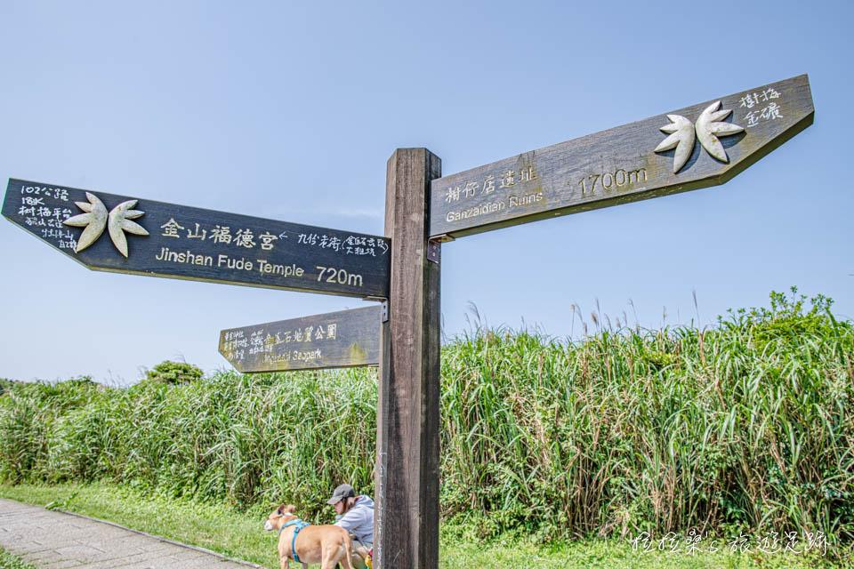無敵海景步道繼續走能通往草山戰備道路