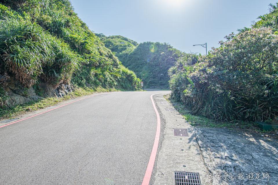 從公車站牌旁的小路可通往鼻頭角步道
