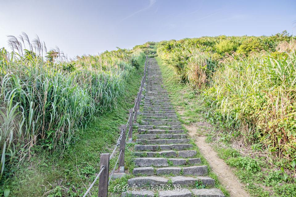 基隆山登山步道路線單純,沿著石階走就能到山頂