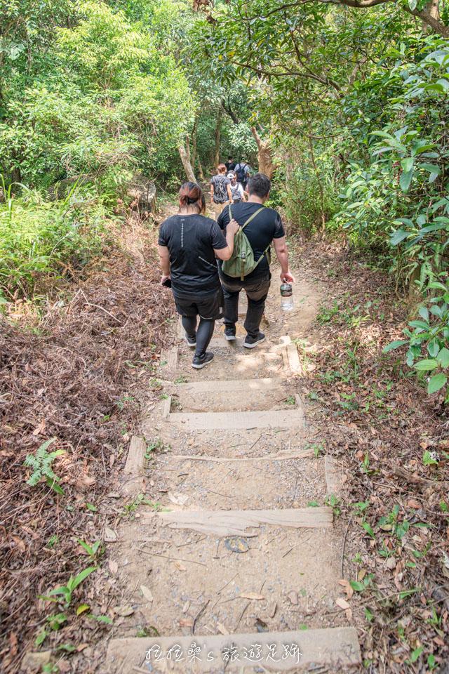 台北劍潭山步道當中一小段下坡的泥土階梯需注意一下腳步