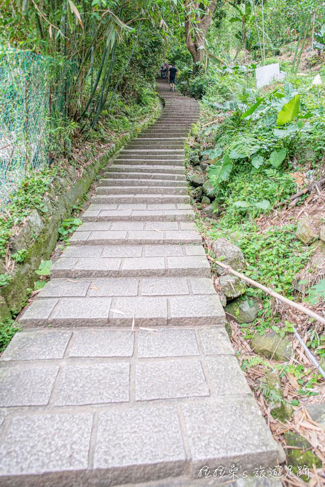 台北天母古道路水管路步道前800公尺為一路陡上的千階樓梯