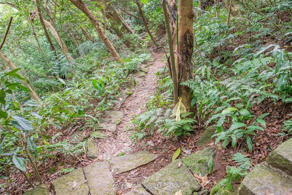 台北天母古道通往翠峰瀑布的小山徑