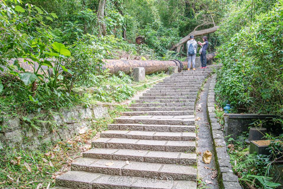 台北天母古道,走上百年歷史的水管路步道,順訪金黃色翠峰瀑布