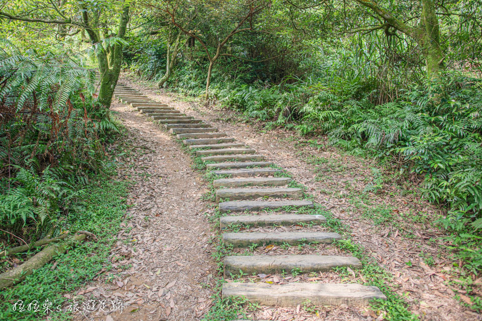 利用基隆姜子寮山步道旁的泥土路走起來更省力