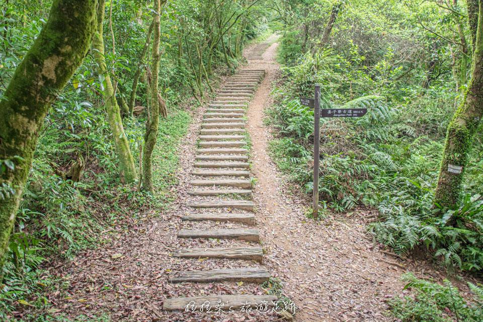基隆姜子寮山步道在岔路處都有明確的路標