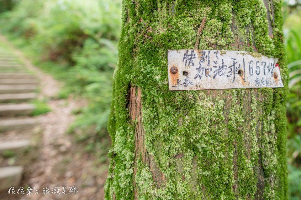 基隆姜子寮山步道從1.2k起坡度開始變陡