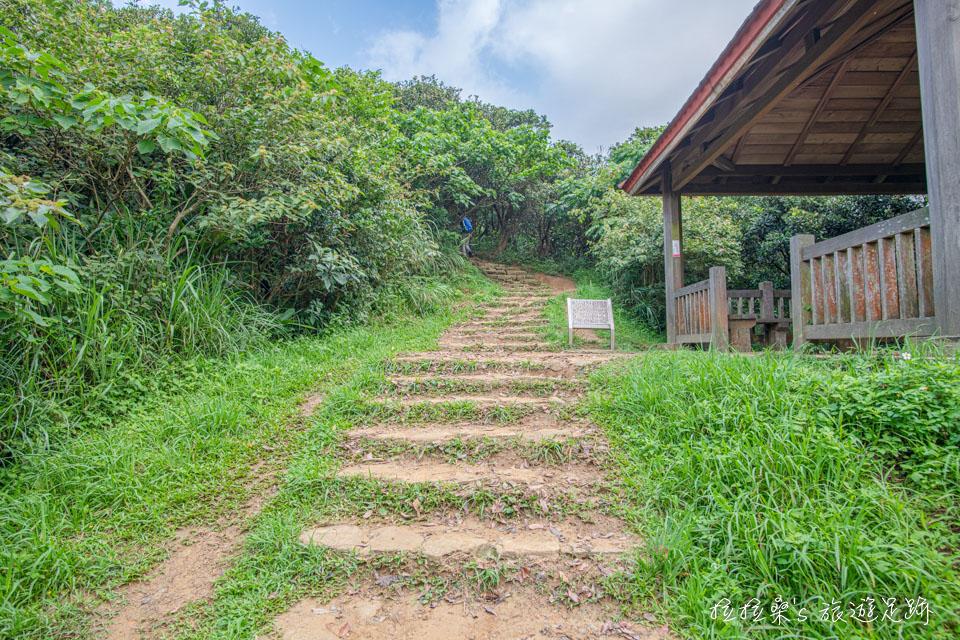 瑞芳南子吝步道是條大小朋友都能輕鬆登頂的步道