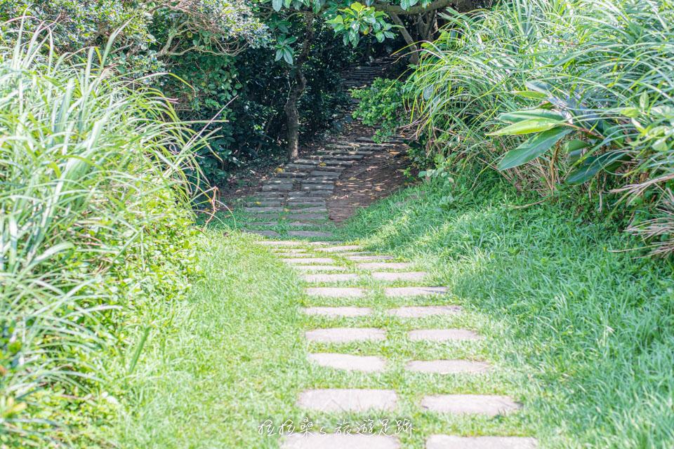 前往龍洞岬步道最美景觀平台的小路