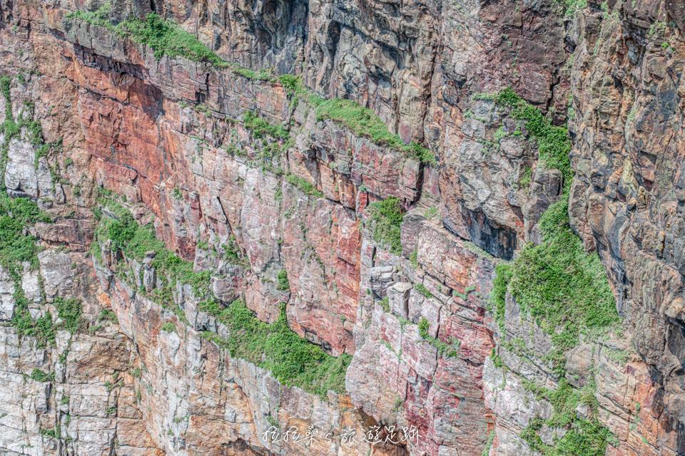 龍洞岬步道景色最美景觀平台,欣賞壯麗的峭壁、海蝕地貌