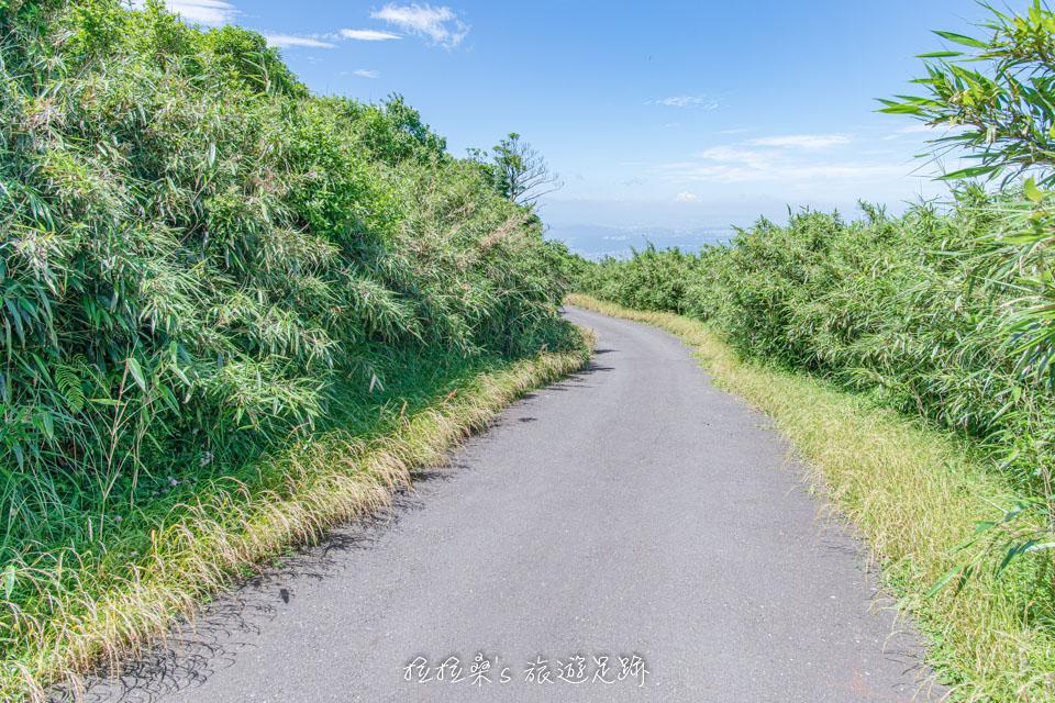 大屯山主峰登山步道後半段為柏油路