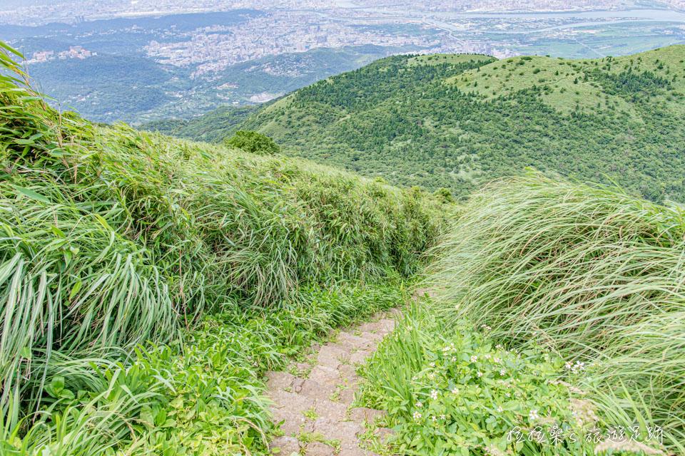 從大屯主峰往南峰出發的步道就在主峰觀景台旁