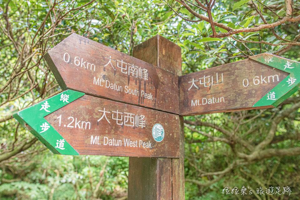 從大屯主峰往南峰途中的大屯坪是不錯的休息點