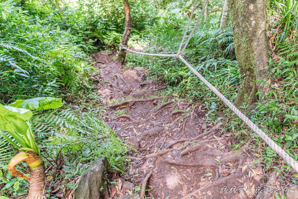 大屯山南峰通往西峰的步道需要拉繩