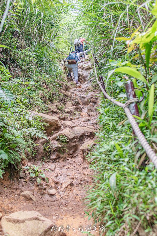 通往大屯山西峰的步道很有挑戰性,須一路拉繩陡上