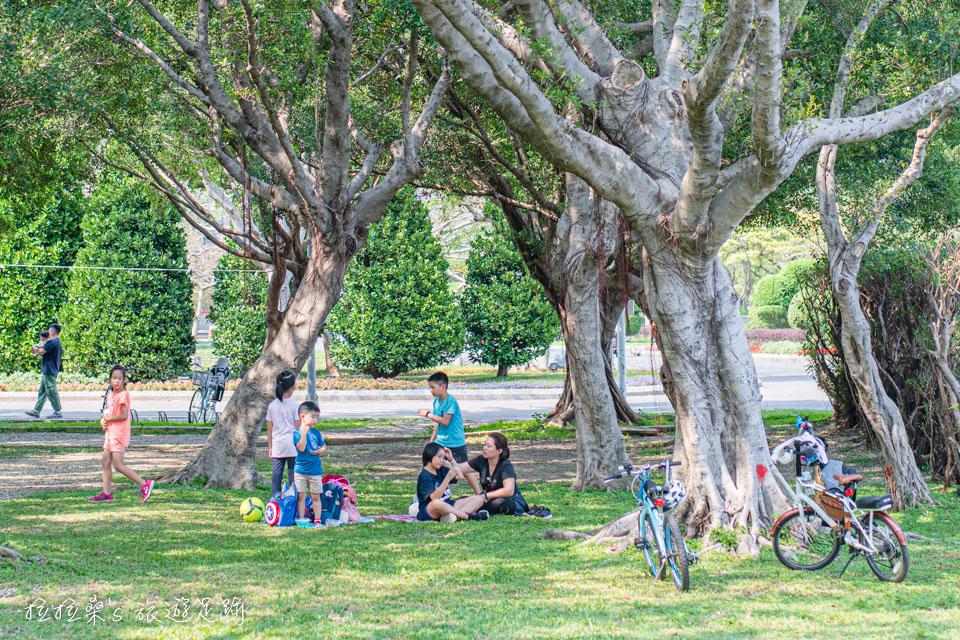 台北花博公園新生園區的樹蔭下超適合帶孩子們來野餐