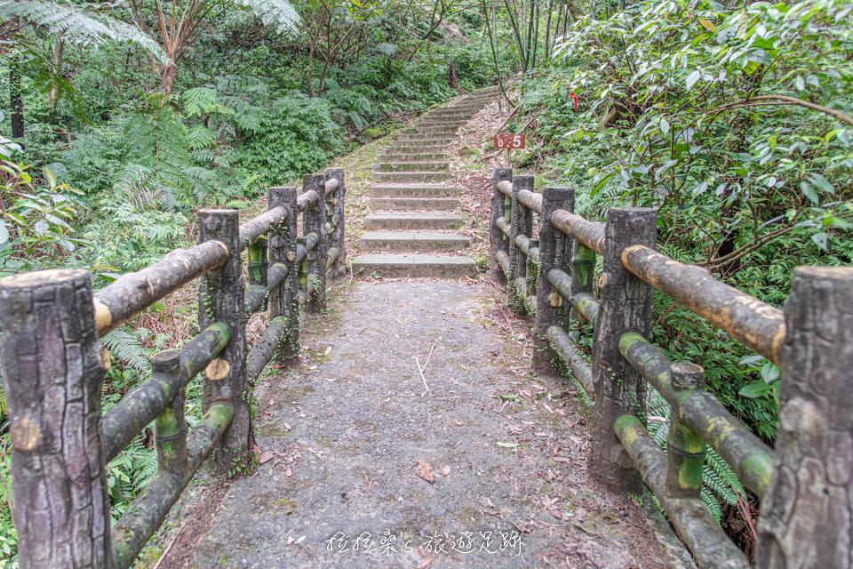 五分山步道前半多都有林蔭遮蔽,不會太曬