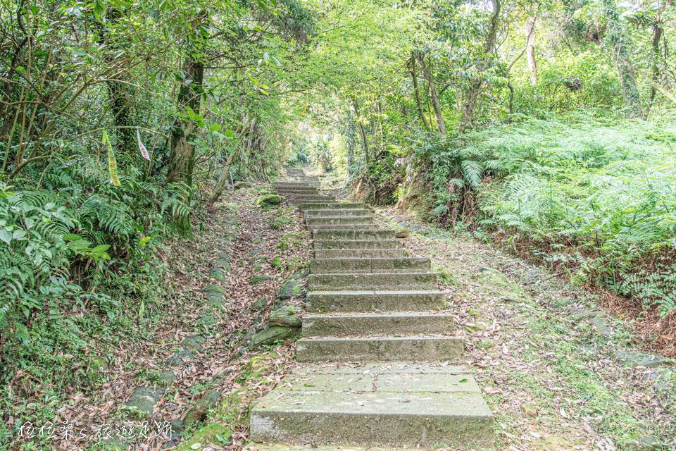 五分山步道前半多是陡上的石階路,走起來蠻累人的