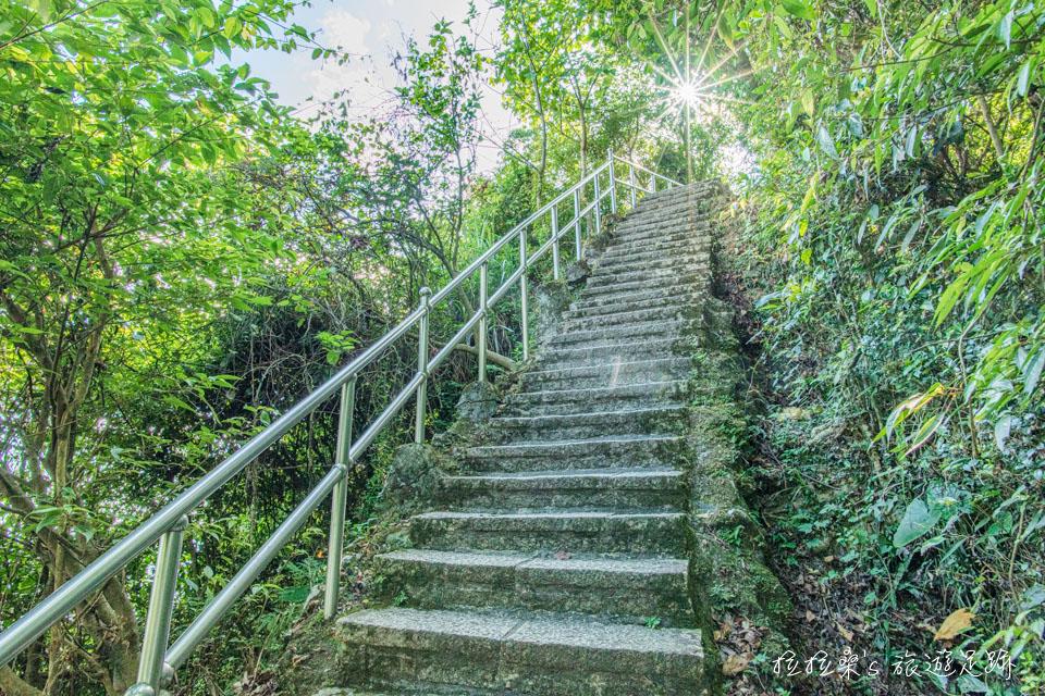 大尖山步道雖只有0.7公里長,但多為一路陡上的石階路