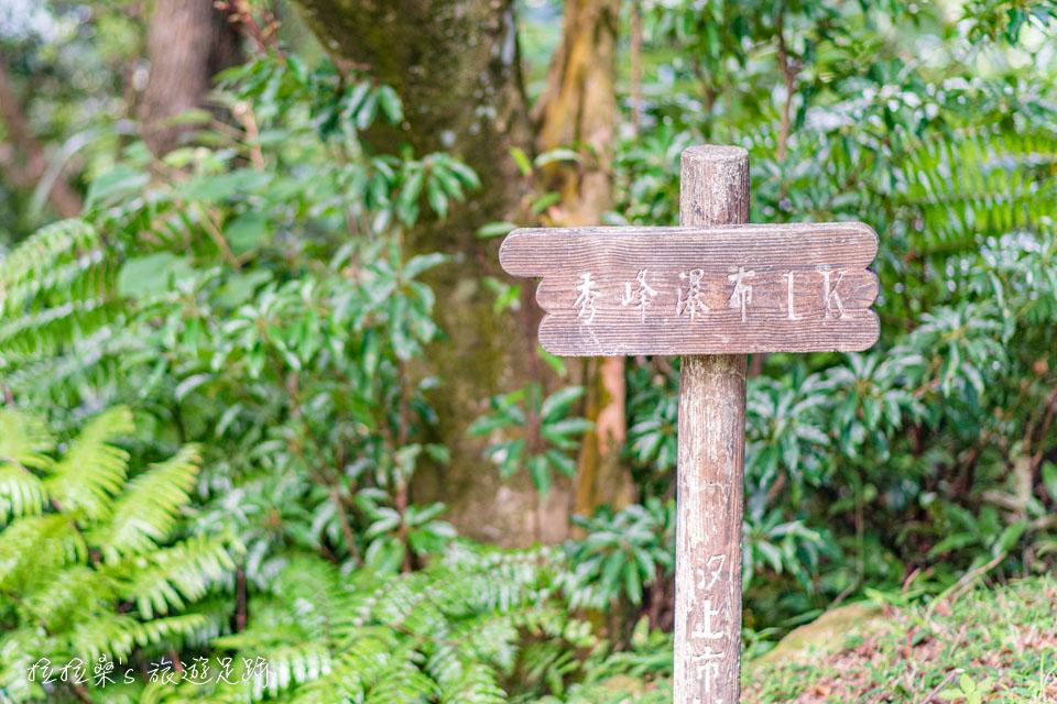 大尖山步道也能通往附近的秀峰瀑布