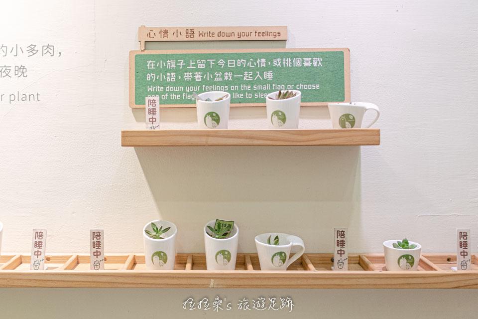 台中葉綠宿旅館獨有的陪睡小盆栽